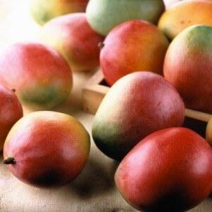 Противораковые свойства манго