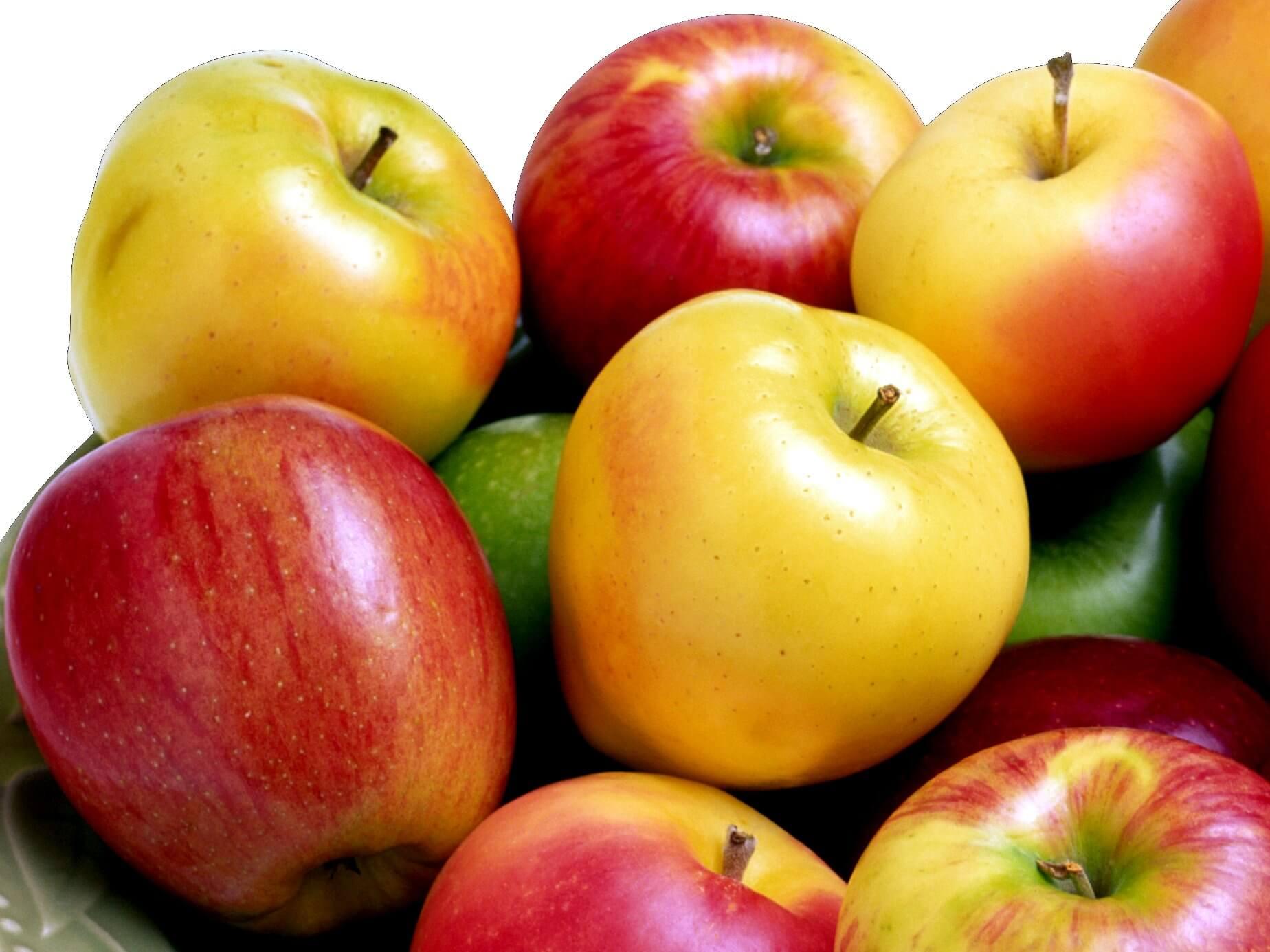 калорийность продуктов правильного питания