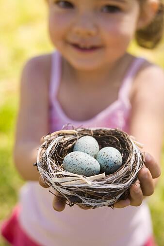 Перепелиные яйца для лечения