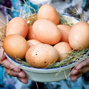 Преимущества куриных яиц для организма
