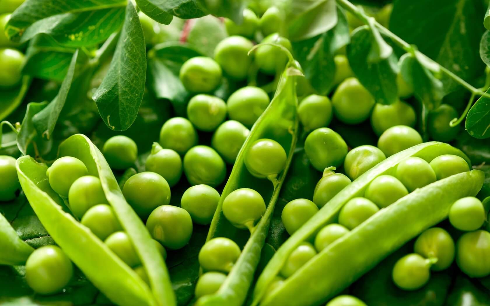 Калорийность гороха, его польза для организма, способы приготовления и рецепты вкусных блюд новые фото