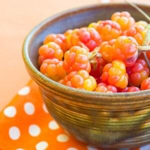 Польза морошки для пищеварения