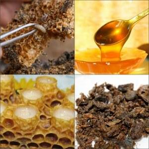 Продукты пчеловодства от туберкулеза