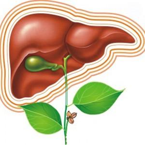 Витаминные препараты для печени