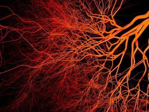Нейровитамины для сосудов