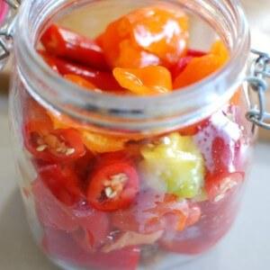 Рецепты засолки перца чили на зиму