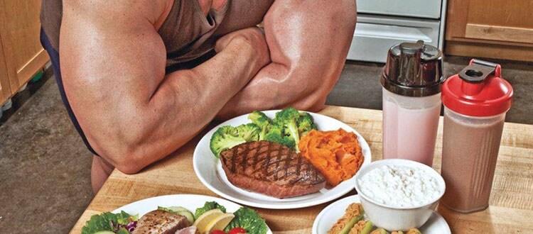 Суточная программа потребления белка