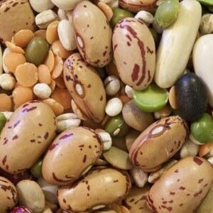 Виды растительного белка