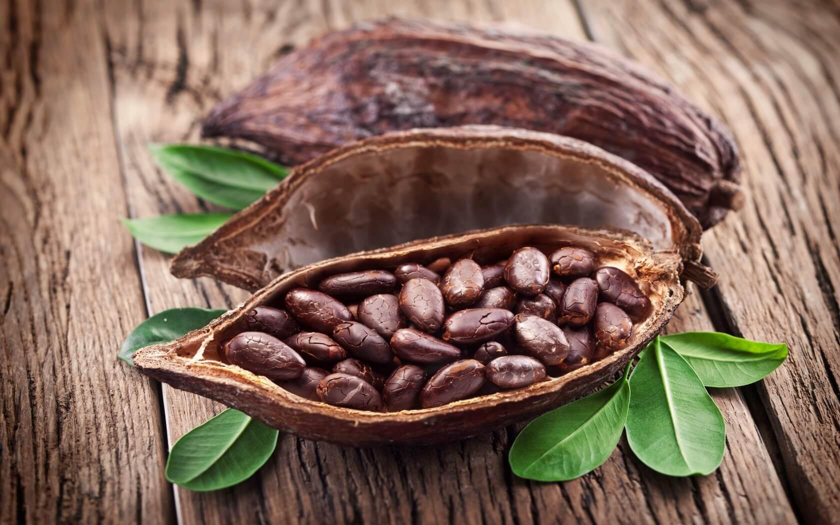 холестерин питание лечение