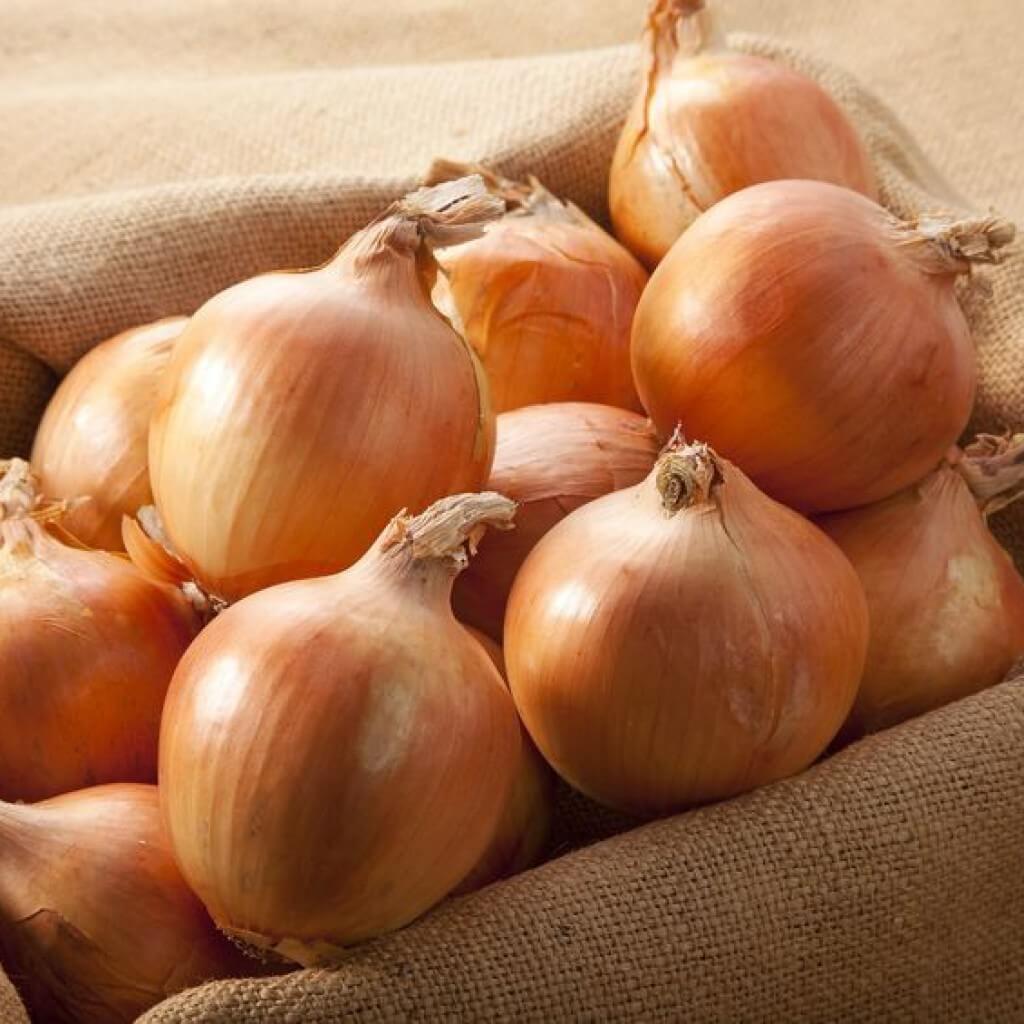 Как подготовить лук к хранению в домашних условиях Сад и огород 29
