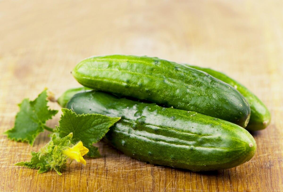 Огурец: описание и сорта, состав и калорийность, польза и применение огурца