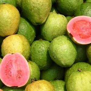 Плоды гуавы