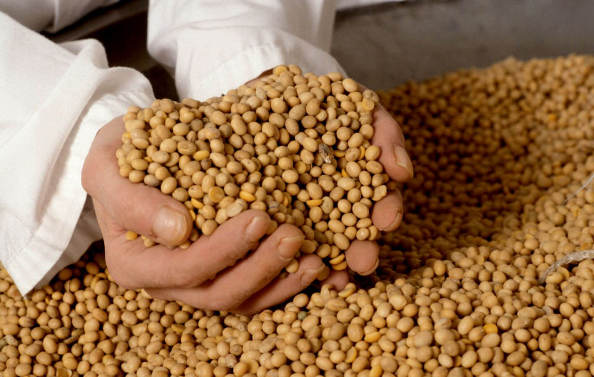 Экологические методы повышения плодородия почвы  Как