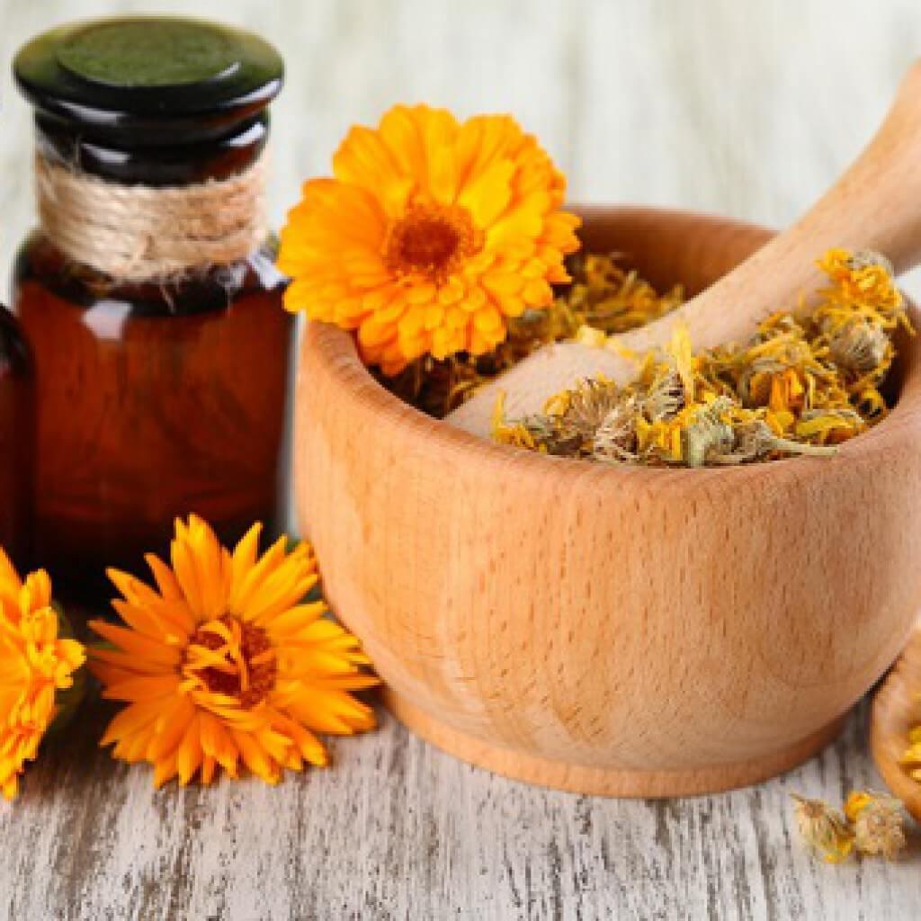 Масло календулы рецепт приготовление в домашних услвоиях