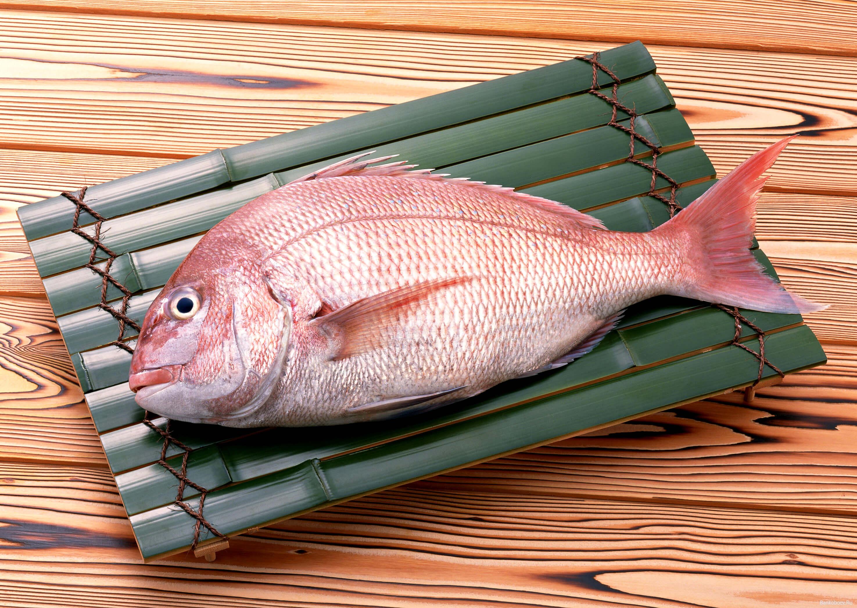 ПОЛЬЗА И ВРЕД МОРСКОГО ОКУНЯ ДЛЯ ОРГАНИЗМА » Все о рыбе и рыбалке
