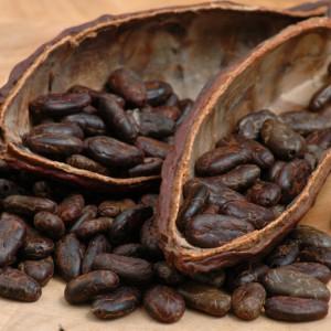 Плоды какао
