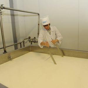Производство сыра фета
