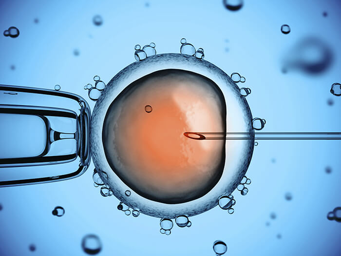 an introduction to the vitro fertilization Chapter 24 – omics approaches in in vitro fertilization aiman to the development of a technique popularly known as in vitro fertilization introduction.