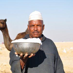 Молоко верблюдов
