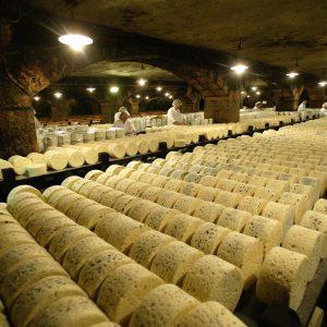 Производство голубого сыра с плесенью