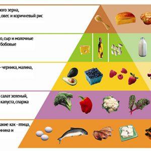 Пищевая пирамида Аткинса