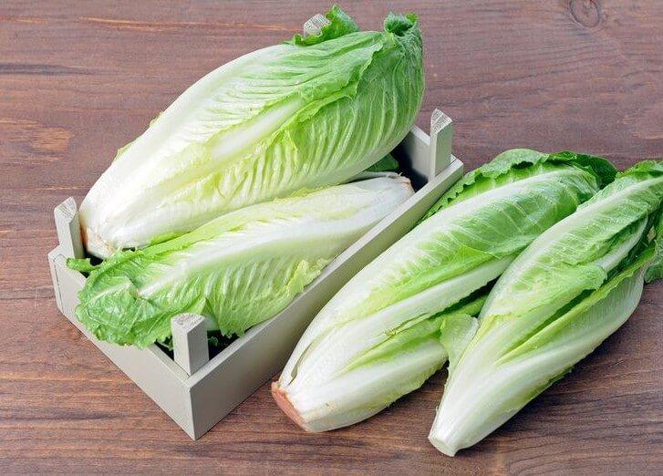 Как выглядит салат ромэн фото