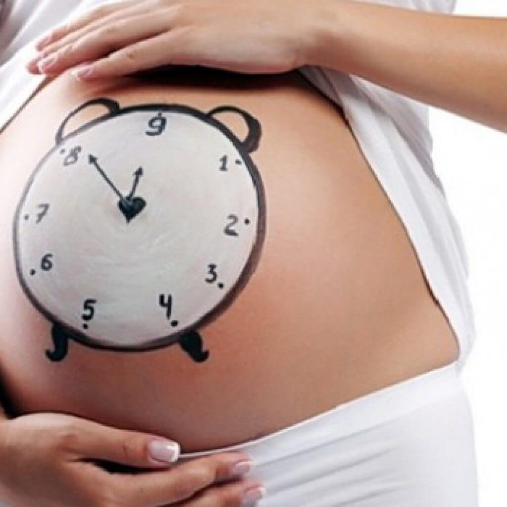 Беременность у кошки переношенная беременность