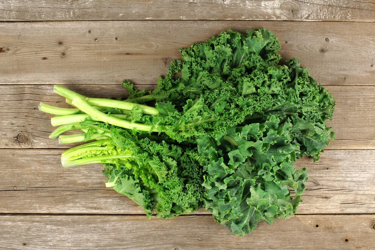 Листовая капуста Кейл: лучшие сорта, выращивание и свойства