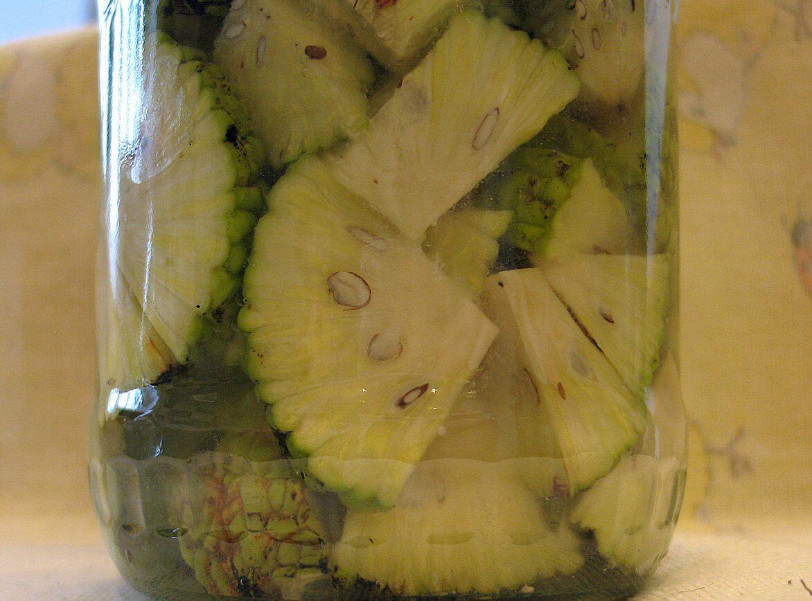 Рецепт настойки адамового яблока