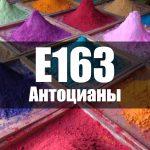 Антоцианы (Е163)