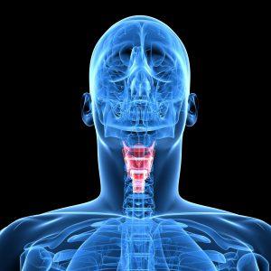 Компьютерная томография (КТ) глотки и гортани