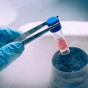 Алгоритм замораживания спермы