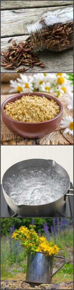 Ингредиенты для лечебного чая