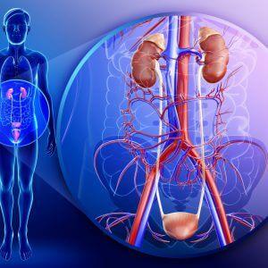 Воспаление мочеполовой системы у мужчин