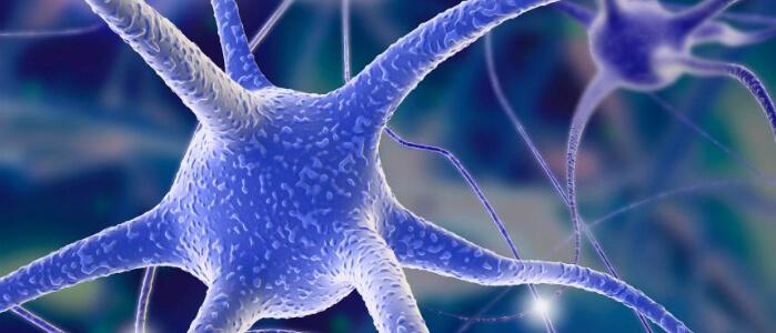 Нейронная клетка мозга