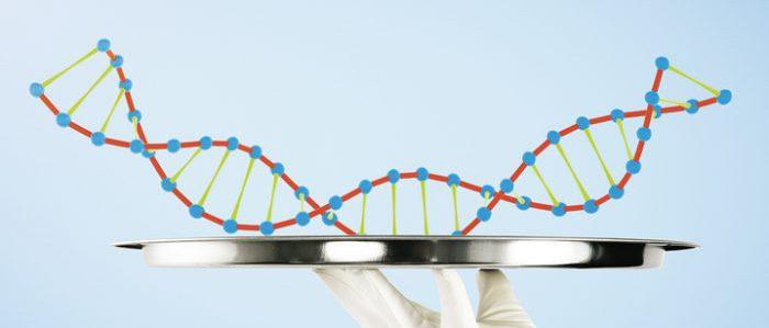 Ученые обнародовали результаты исследований по ДНК-диете