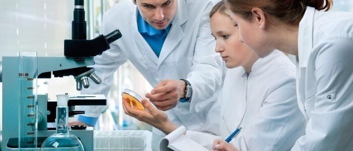 Ученые установили, как бактерия находит свою цель