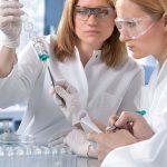 Ученые выращивают в пробирке крошечный мозг - исследования