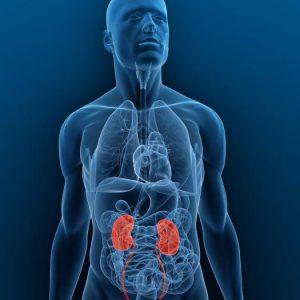 Повреждение целостности мочевыводящих каналов