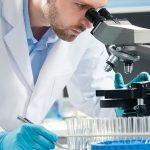 Выявлены некоторые секреты процесса смерти клетки