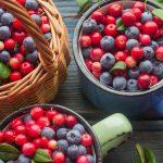 Научное исследование чудесных свойств северных ягод