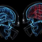 Смоделированы колебания мозга при сотрясении