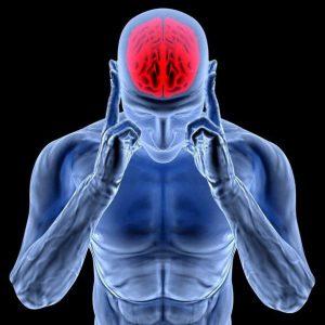 Кровоснабжение клеток головного мозга