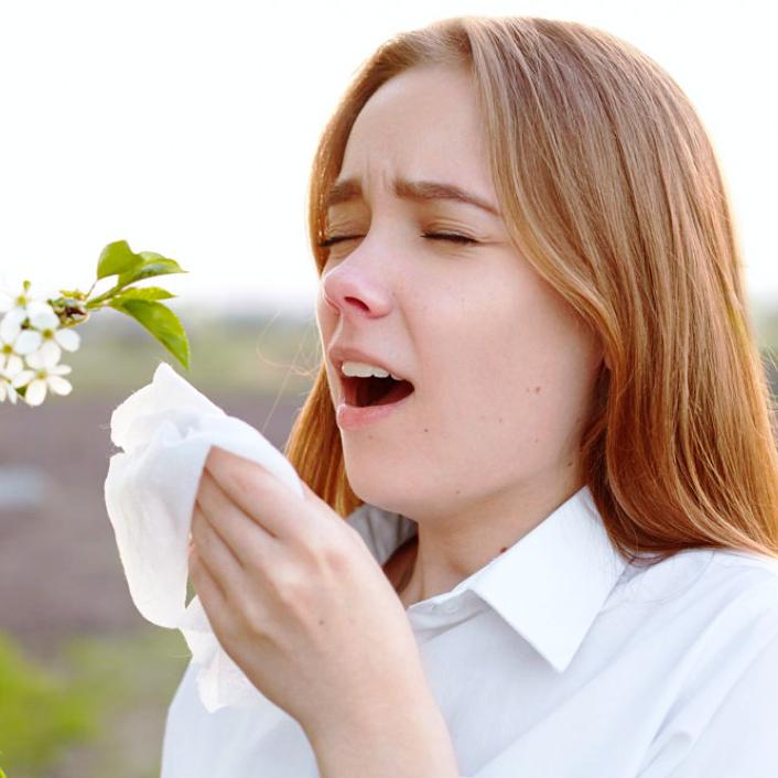 Пыльца березы перекрестная аллергия