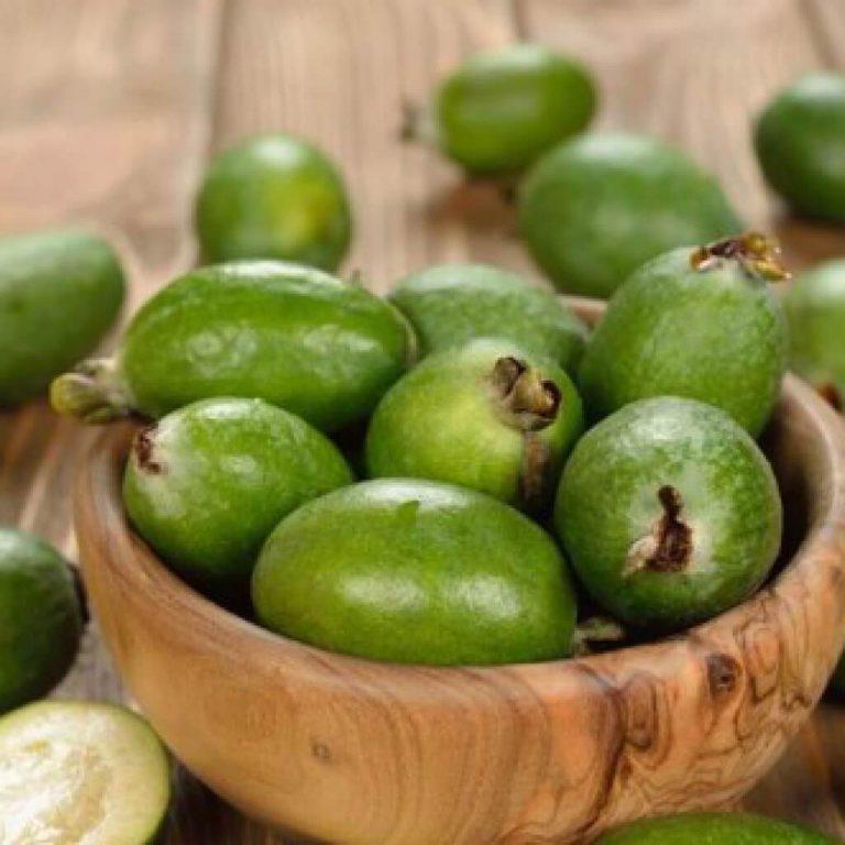 Полезные свойства фрукта фейхоа