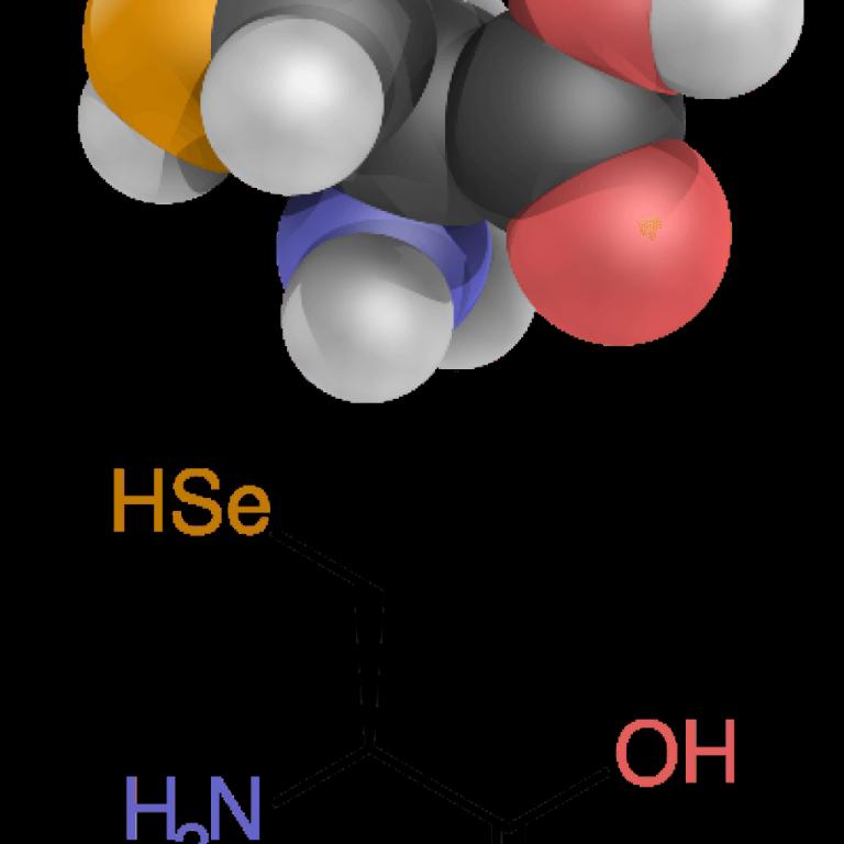 Гидроксилизин