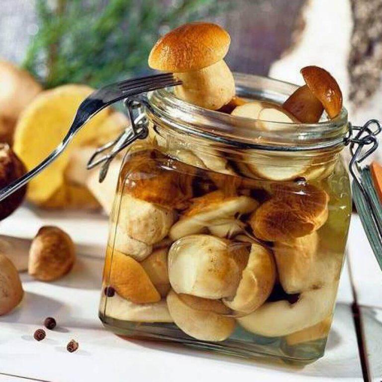 Медики назвали полезные свойства грибов