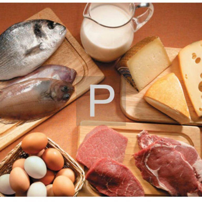 Продукты питания богатые фосфором