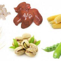 Продукты питания богатые молибденом