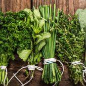 Пряные травы улучшают пищеварение и избавляют от газообразования: заключение ученых
